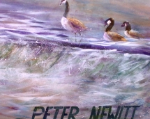 boathouse_row_geese_detail