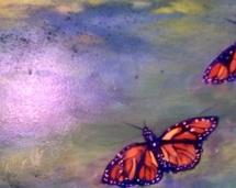 Butterflies_at_Pop_Pop's_House