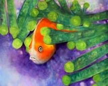 Timid_Goldfish