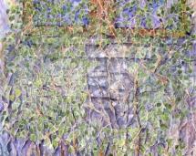 Vines_on_James_Audubon's_Windows