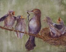 Birds_Feeding