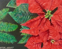 Christmas Pointsettia 3