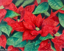 Christmas_Pointsettia