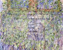 vines_on_james_audubons_windows