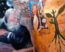 hs_science_mural_galileo_wall